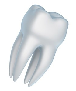 amalgam fillings vs white dental fillings with a Portland dentist in Clackamas Oregon